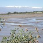 Blick vom Flussufer auf die verschneiten Anden bei 30 Grad